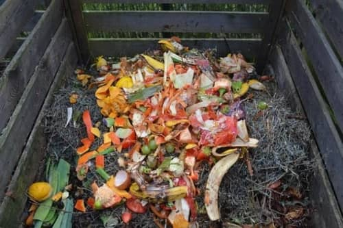 Outdoor Pile of Compost