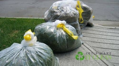 Garbage Bags Full Of Grass Clippings